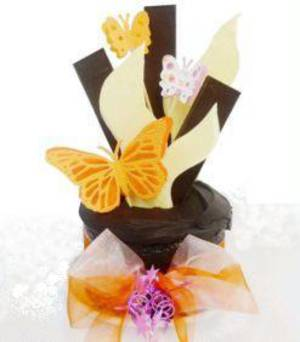 Little Butterfly Cake